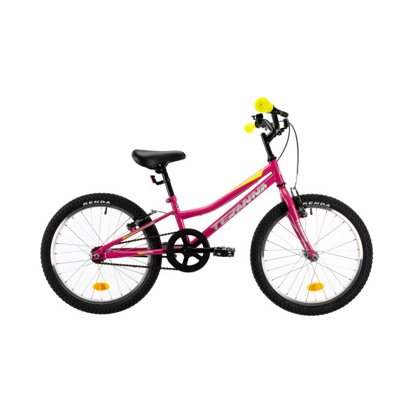 """Ποδήλατο DHS MTB 20"""" 2020DHS2004 Roz"""