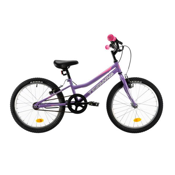 """Ποδήλατο DHS MTB 20"""" 2020DHS2004 Violet"""